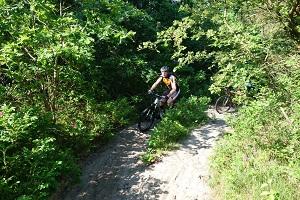 Mountainbikes huren singletracks PWN gebied