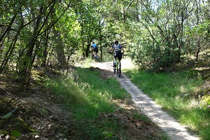 Goed onderhoud mtb mountainbike huren Loonse en Drunense duinen