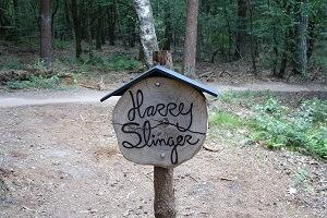 Harry Slinger mtb huren Amerongen