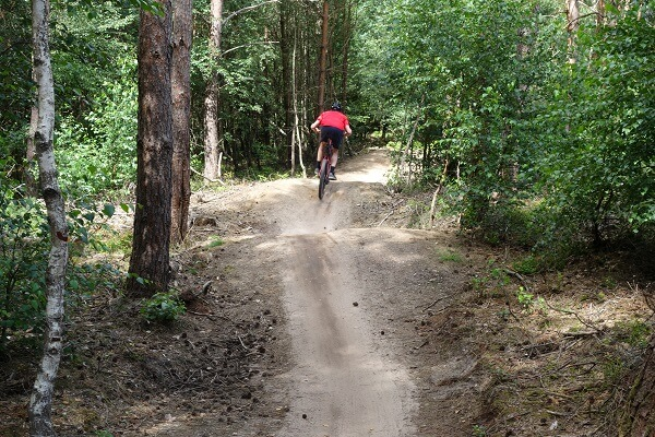 Huur mountainbikes Amerongen bulten