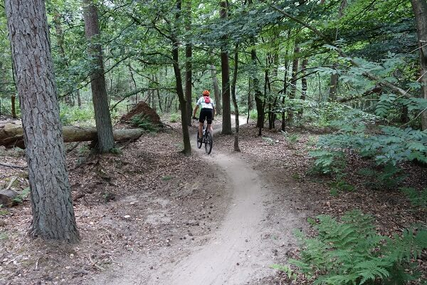 Huur mountainbikes Leersum Snakerun 600 x 400